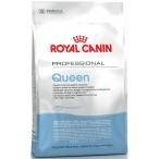 Корм Royal Canin Queen для беременных и кормящих кошек, 10 кг