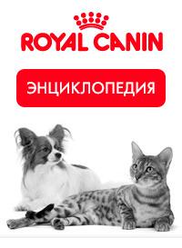 Энциклопедия Royal Canin