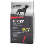 Корм Golosi Energy All Breed для собак всех пород, с говядиной и рисом, 12 кг
