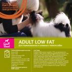 Корм Wellness CORE Kitten для котят, индейка с лососем, 1.75 кг