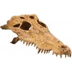 Hagen убежище-декор череп крокодила для террариума