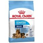 Корм Royal Canin Maxi Starter для щенков крупных пород до 2 мес., беременных и кормящих сук, 15 кг
