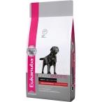 Корм Eukanuba для собак породы лабрадор-ретривер, 10 кг