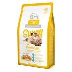 Корм Brit Care Sunny Beautiful Hair для кошек, для ухода за кожей и шерстью, с мясом лосося и рисом, 2 кг