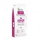Корм Brit Care Junior Large Breed Lamb&Rice для щенков крупных пород, ягненок с рисом, 12 кг