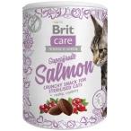 Лакомство Brit Care Superfruits Salmon для кошек, с лососем, 100 г