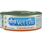 Корм Farmina Vet Life Convalescence (паштет) для кошек в период восстановления (выздоровления), 85 г