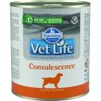Корм Farmina Vet Life Convalescence (паштет) для собак в период восстановления (выздоровления), 300 г