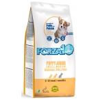 Корм Forza10 Maintenance Puppy/Junior Small/Medium для щенков малых и средних пород, с курицей и картофелем, 2 кг