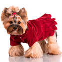 Товары для собак - Одежда для собак