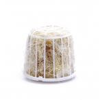 Benelux Хлопковый материал для витья гнезда в катушке 40 г, 100 кг