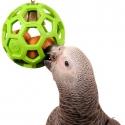 Товары для птиц - Игрушки для птиц